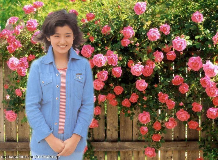 top14:日韩最美丽的十四大美女明星zt