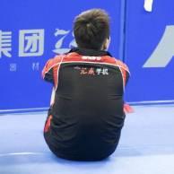 樊振东保护协会