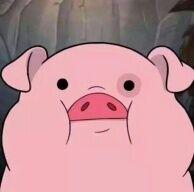 你养猪时很美丶