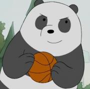 爱打球的熊猫